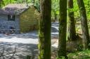 rifugio-segavecchia-foresta-appennino-bolognese-bosco