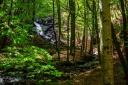 rifugio-segavecchia-foresta-appennino-bolognese-cascata